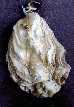 Rock Oyster Pendant with Gold wire