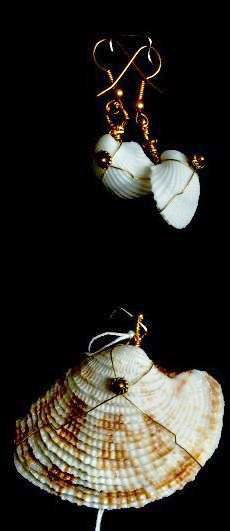 White Shell Earrings & Brown/White Pendant